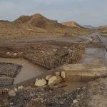 خسارت۷۵۰میلیون تومانی سیل در هنزای رابر
