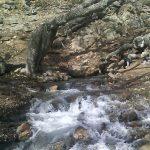 منطقه زیبای گردشگری گردودره کار رابر/تصاویر