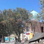 اولین جشنواره گردشگری بومی محلی عشایری در روستای سید مرتضی رابربرگزار شد