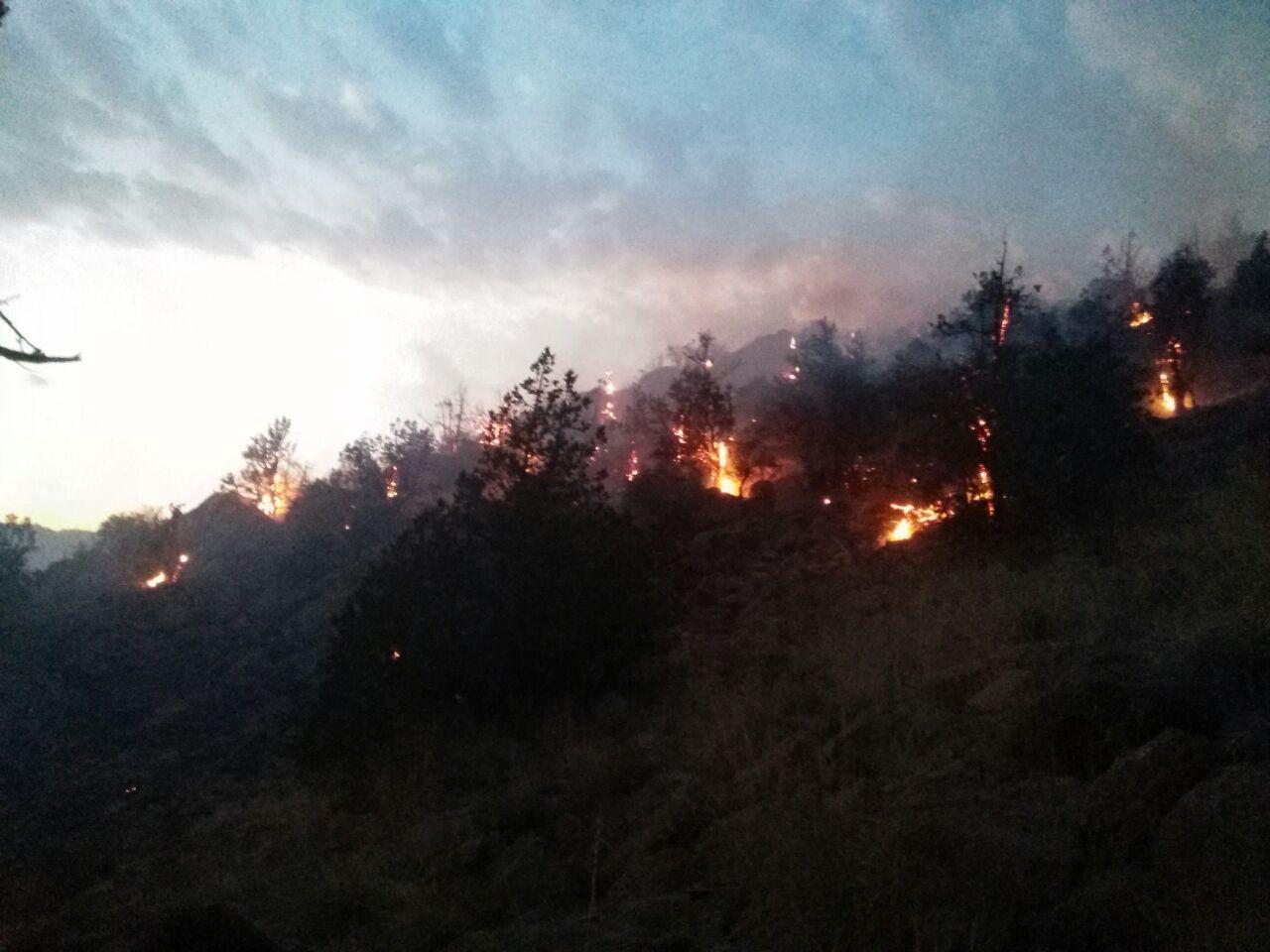 آتش سوزی گسترده در محدوده کندر تیل رابر پس از ۶ ساعت مهار شد