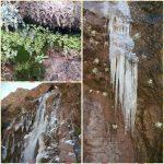 آوای خروشان زمستان آبسر رابر در دل طبیعت