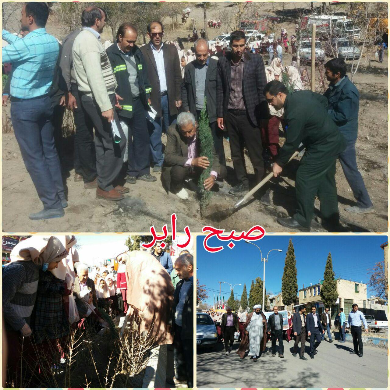 کاشت ۳۵۰ اصله درخت به یاد شهدای والامقام شهرستان رابر