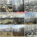 آتش غفلت گردشگران، باز هم درباغات چشمه عروس رابر