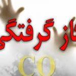 گاز منواکسید کربن ۷ نفر را درروستای ابراهیم آباد رابرمسموم کرد
