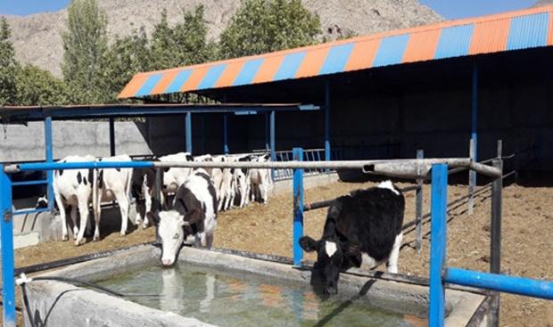 ۶ طرح کشاورزی در رابر آماده بهره برداری شد